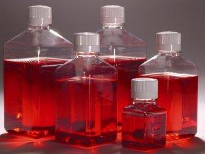 LONZA  X-VIVO 限定化学成分无血清造血细胞培养基